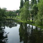rio arnoia