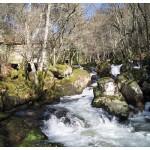 rio barbantiño