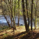 rio ouro 2