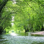 ruta da natureza, monforte