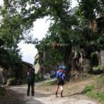 triacastela_Camino de Santiago-lugar de Ramil Triacastela 017