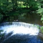 tt_Presa en el Rio Rodil Baos