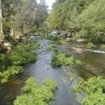 vimianzo rio 12