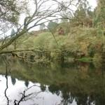 vimianzo rio 24