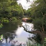 vimianzo rio 4