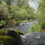 vimianzo rio 6
