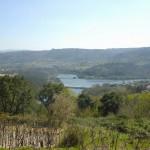 vista desde Ribela