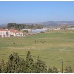 vista desde pazo vilamarin