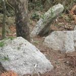 zas - arqueologia
